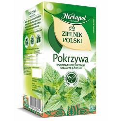 Zielnik Polski Pokrzywa...