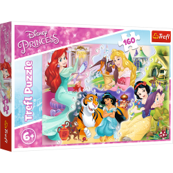 Puzzles 6+ Princesses and...